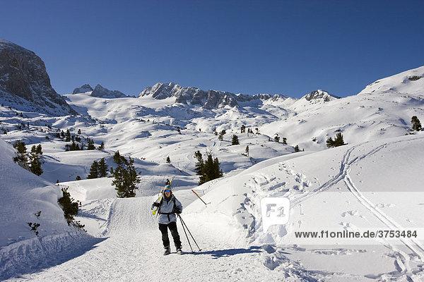 Schitourengeherin trägt ihre Ski  dahinter Hoher Dachstein  Niederer Dachstein und Schöberl  Dachstein  Steiermark  Österreich