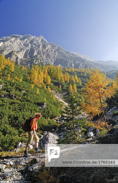 Woman hiking in front of the Elferkofel  Fischlein Valley  Sextener Dolomites  South Tyrol  Italy