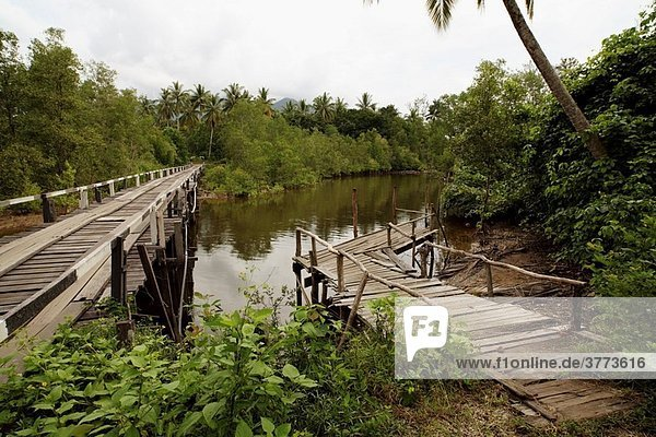 Wooden bridge & jetty found at Camp Pueh  Sematan  Borneo