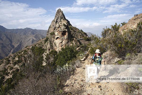 Roque Cano bei Vallehermoso  La Gomera  Kanaren  Spanien