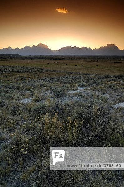 Farmland vor Grand Teton Gebirge  Grand Teton Nationalpark  Wyoming  USA  Vereinigte Staaten von Amerika