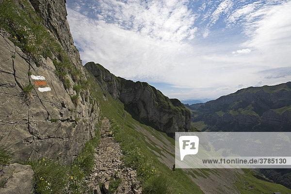 Mountain way with markings in the Alpsteingebirge Canton Appenzell  Switzerland