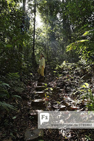 Frau auf Urwaldpfad  Nationalpark Maquenque  Costa Rica