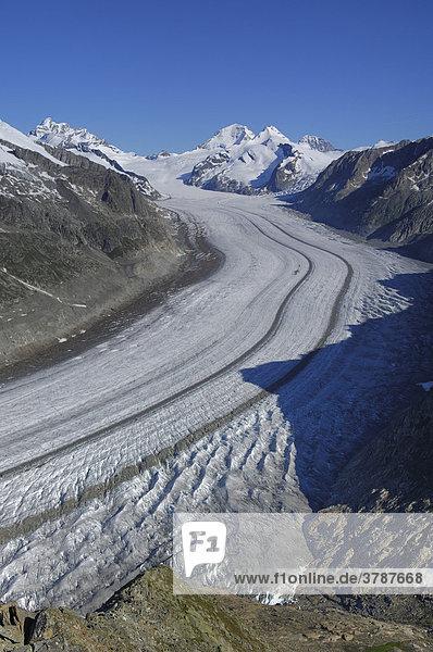 Blick vom Eggishorn auf den grossen Aletschgletscher  Goms  Wallis Schweiz