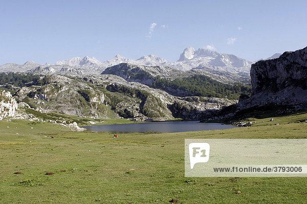 Bergsee Lago Ercina im Picos de Europa Spanien