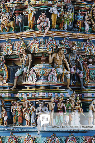 India  Tamil Nadu  Chennai ex Madras  Mylapore districtit  the Gopuram Tower of the Temple devoted to Shiva