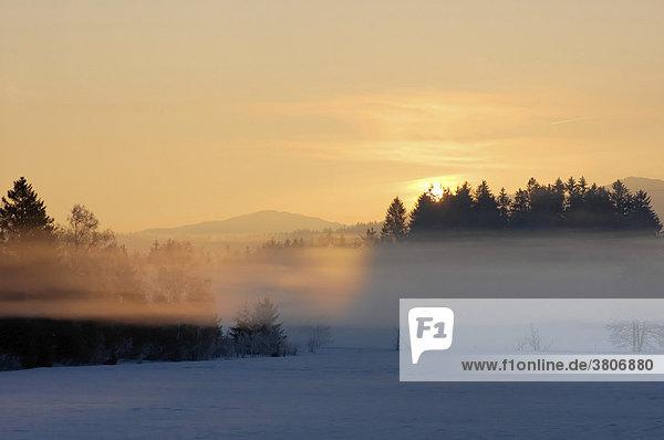 Sonnenaufgang mit Winterlandschaft und Nebel