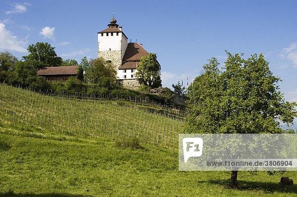 Castle Werdenberg above Werdenberg Buchs in the rhine valley canton St. Gallen Switzerland