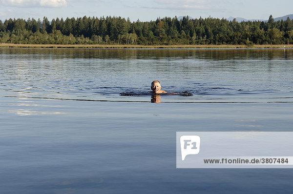 Mann schwimmt im See  Kirchsee  Oberbayern  Bayern  Deutschland