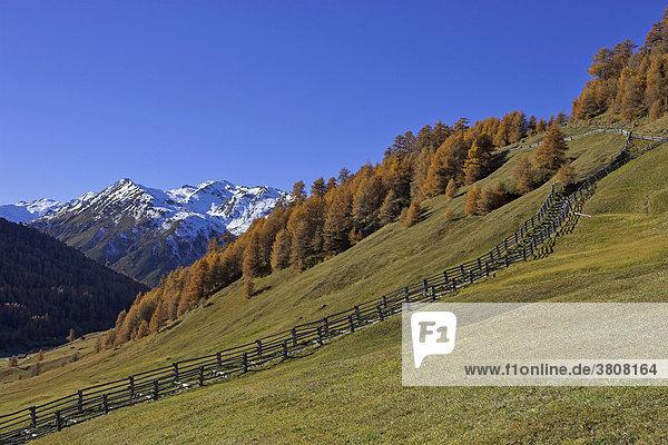 Traditioneller Holzzaun  Rojen  Südtirol  Italien