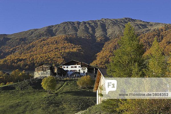 Bergbauernhof am Fuß der Kopflplatte  oberhalb von Prad  Vinschgau  Südtirol  Italien