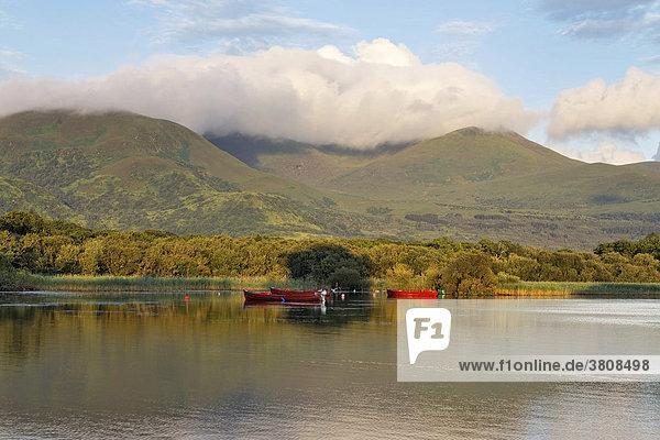 Lough Leane und die Berge der Reeks im Morgenlicht  Killarney Nationalpark  Killarney  Irland