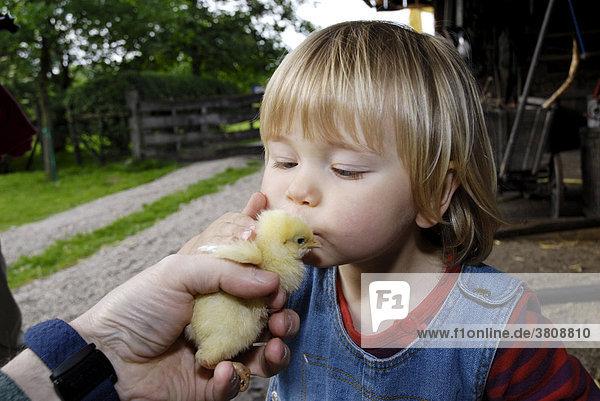 Little girl kisses chick
