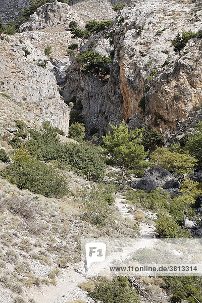 Rouvas-Schlucht (Rouwas) bei Zaros  Ida-Gebirge (Psiloritis)  Zentralkreta  Kreta  Griechenland