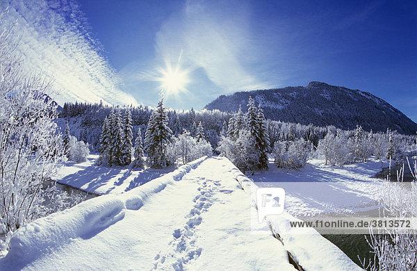 Isar bei Vorderriß  Isarwinkel  Wintermorgen  Bayern