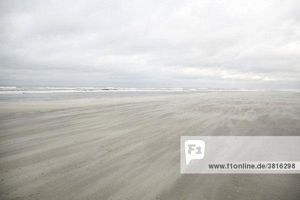 Nordseestrand bei Den Haag Südholland  Niederlande