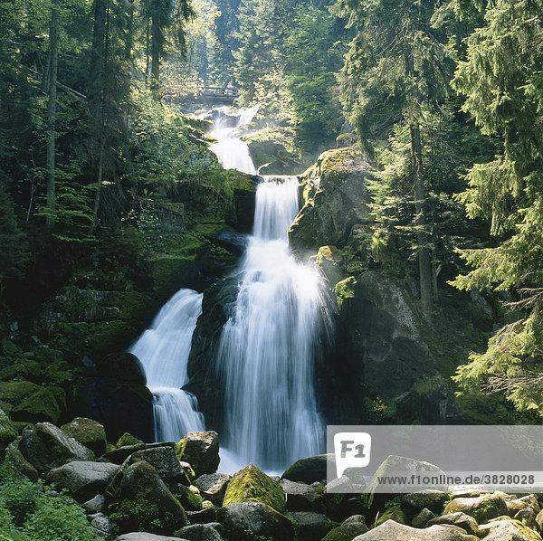 Triberger Wasserfaelle  Schwarzwald  Baden-Wuerttemberg  Deutschland Triberger Wasserfaelle, Schwarzwald, Baden-Wuerttemberg, Deutschland