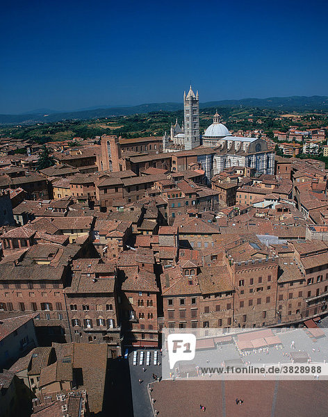 Blick auf Siena mit Kathedrale Santa Maria Assunta  Siena  Toskana  Italien