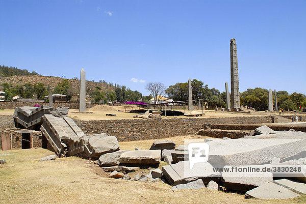 Fallen down and broken stele Nr. 1 with standing stele Nr. 3 in stele park Axum Ethiopia