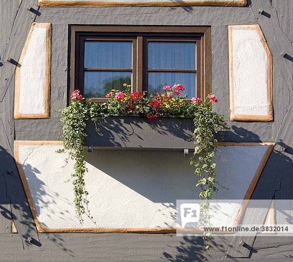 Ulm  Deutschland - Fachwerkhaus im Fischerviertel