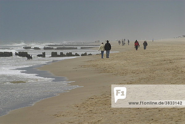 People walking at the beach at bad weather  Sylt  Schleswig Holstein  Germany
