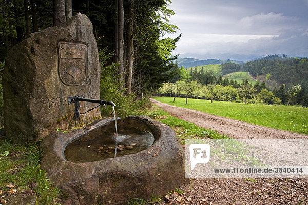 Ein Trinkwasserbrunnen für Wanderer des Schwarzwaldvereins  Sektion Oberkirch  Baden-Württemberg  Deutschland  Europa Ein Trinkwasserbrunnen für Wanderer des Schwarzwaldvereins, Sektion Oberkirch, Baden-Württemberg, Deutschland, Europa