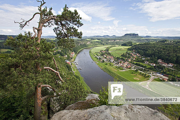 Blick vom Basteifelsen auf das Elbtal  Elbsandsteingebirge  Nationalpark Sächsische Schweiz  Sachsen  Deutschland  Europa