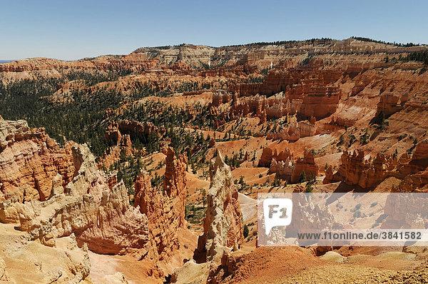 Blick in den Bryce Canyon Nationalpark  Utah  USA  Nordamerika