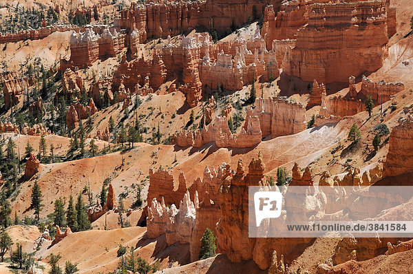 Felslandschaft mit Hoodoos  Bryce Canyon Nationalpark  Utah  Amerika  USA