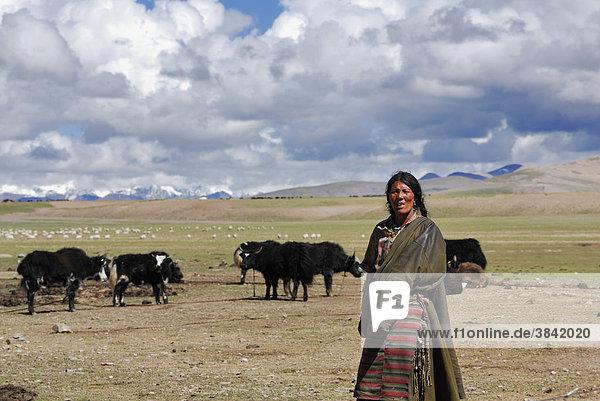 Nomadin  Namtso See  Himmelssee  Tibet  China  Asien