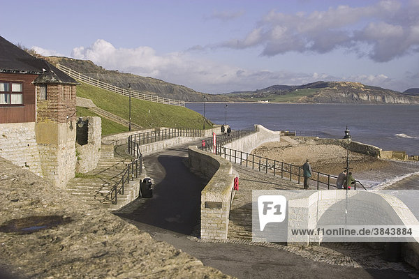 Award-winning storm water and sewage system  with protective sea wall  Lyme Regis  Dorset  England  United Kingdom  Europe