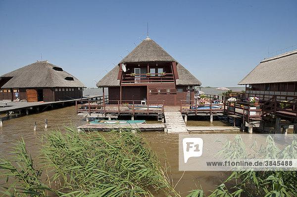 Siedlung Huas im See  Neusiedler See  Fertö  Ungarn  Europa