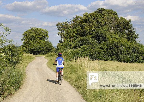 Radfahrerin auf Feldweg  Triestingtal  Niederösterreich  Österreich  Europa