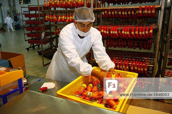 Mann beim Verpacken von Fleischprodukten  Llanquihue  Süd Chile  Südamerika