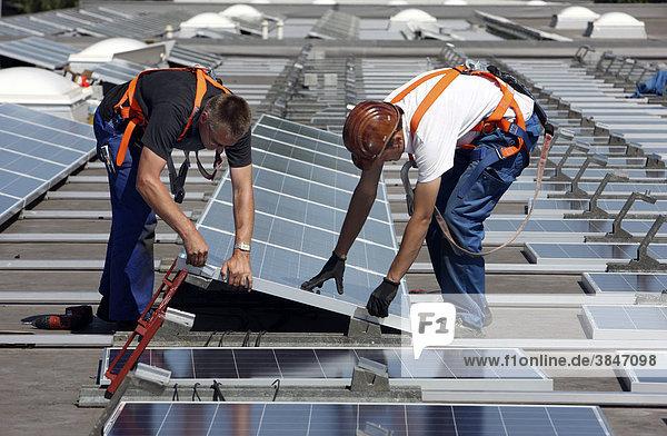 Bau einer großen Photovoltaik-Anlage auf mehreren Flachdächern auf rund 16000 qm Fläche  Gelsenkirchen  Nordrhein-Westfalen  Deutschland  Europa