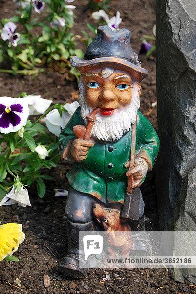 Gartenzwerg  rauchender Förster im Garten mit Pfeife  Dackel und Gewehr