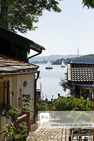 Blick auf den Chiemsee  Fraueninsel  Chiemgau  Oberbayern  Bayern  Deutschland  Europa