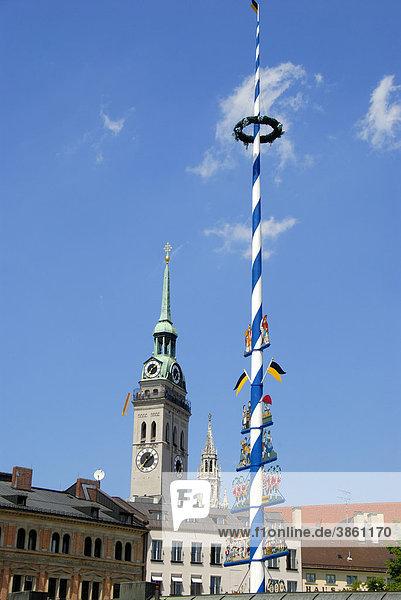 Blick vom Viktualienmarkt auf den Maibaum und spitze Türme  Alter Peter  Sankt Peter  und Neues Rathaus  Innenstadt  Altstadt  City  Zentrum  München  Landeshauptstadt  Oberbayern  Bayern  Deutschland  Europa