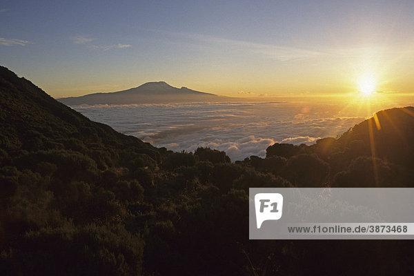 Afrika  afrikanisch  afrikanische  afrikanischer  afrikanisches  am  Atmosphäre  atmosphärisch  atmosphärische  atmosphärischer  atmosphärisches  Atmosphaere  atmosphaerisch  atmosphaerische  atmosphaerischer  atmosphaerisches  außen  Außenaufnahme  Ausblick  aussen  Aussenaufnahme  Aussenaufnahmen  Aussicht  Aussichten  bei  bekannt  bekannte  bekannter  bekanntes  berühmt  berühmte  berühmter  berühmtes  Berg  Berge  Berggruppe  Berggruppen  bergig  bergige  bergiger  bergiges  Berglandschaft  Berglandschaften  Bergmassiv  Bergmassive  beruehmt  beruehmte  beruehmter  beruehmtes  Blick  der  draußen  draussen  Gebirge  Gegenlicht  Gegenlichtaufnahme  Gegenlichtaufnahmen  Gipfel  Hut  Kilimandscharo  Kilimanjaro  Landschaft  Landschaften  menschenleer  Meru  Morgen  morgendlich  Morgenlicht  morgens  Morgensonne  Morgenstimmung  Mount  Natur  Nebel  nebelig  nebelige  nebeliger  nebeliges  Nebelmeer  Nebelmeere  niemand  Saddle  Sehenswürdigkeit  Sehenswürdigkeiten  sehenswert  sehenswerte  sehenswerter  sehenswertes  Sehenswuerdigkeit  Sehenswuerdigkeiten  Sonnenaufgänge  Sonnenaufgaenge  Sonnenaufgang  Spitze  Spitzen  Stimmung  Stimmungen  stimmungsvoll  stimmungsvolle  stimmungsvoller  stimmungsvolles  Täler  Taeler  Tal  Tansania  Tanzania  UNESCO  von  Vulkan  Vulkane  vulkanisch  vulkanische  vulkanischer  vulkanisches  Weltnaturerbe