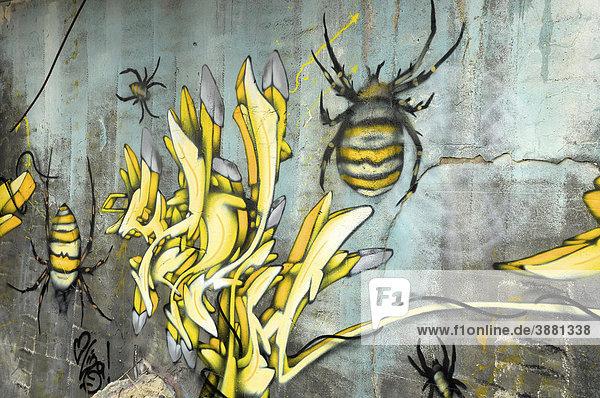 Graffiti auf den Ruinen eines ehemaligen Militärstützpunktes  Hohe Warte bei Gießen  Hessen  Deutschland  Europa
