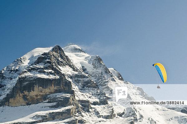 Gleitschirmflieger und Jungfrau  Mürren  Berner Oberland  Schweiz  Europa