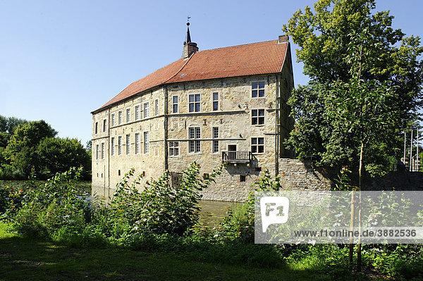 Burg Lüdinghausen  Lüdinghausen  Nordrhein-Westfalen  Deutschland  Europa