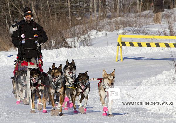 Viermaliger Yukon Quest und Iditarod-Champion Lance Mackey und sein Hunde-Team kommt am Checkpoint Pelly Crossing an  Yukon Quest 1000 Meilen Internationales Schlittenhunderennen 2010  Yukon Territory  Kanada  Nordamerika