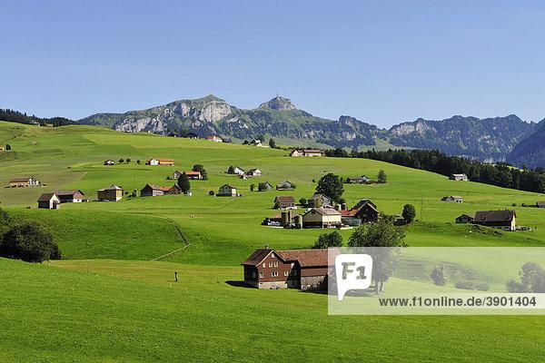 Landschaft mit Bauernhäusern  hinten das Alpsteingebirge  Kanton Appenzell  Schweiz  Europa