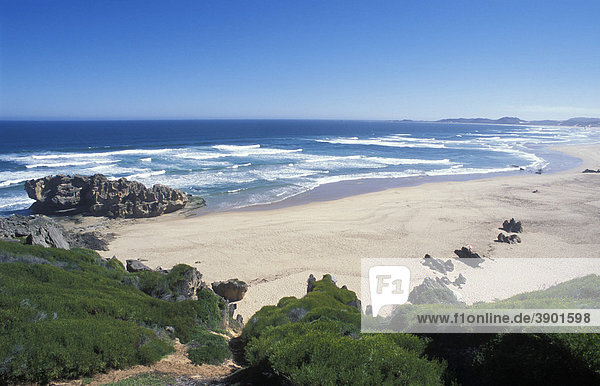 Beach at Brenton-on-Sea  Wilderness National Park  in Knysna  Garden Route  Western Cape  South Africa  Africa