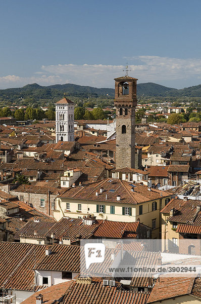 View from the Torre Guinigi look-out on the city  Lucca  Tuscany  Italy  Europe