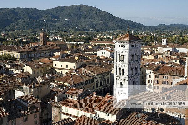 Aussicht von Torre Civica Delle Ore auf die Stadt  Lucca  Toskana  Italien  Europa