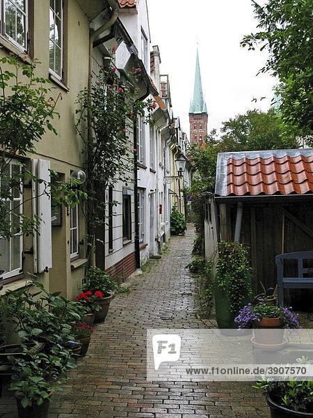 Schwans Hof Gasse  die zu dem Kirchturm von St. Petri führt  Lübeck  Schleswig-Holstein  Deutschland  Europa