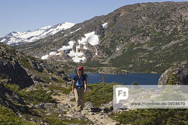 Young woman hiking  backpacking  hiker with backpack  historic Chilkoot Pass  Chilkoot Trail  Long Lake behind  alpine tundra  Yukon Territory  British Columbia  B. C.  Canada