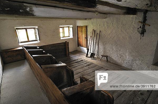 Kuhstall  Bauernhofmuseum Glentleiten  Bayern  Deutschland  Europa
